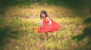 红色公主梦
